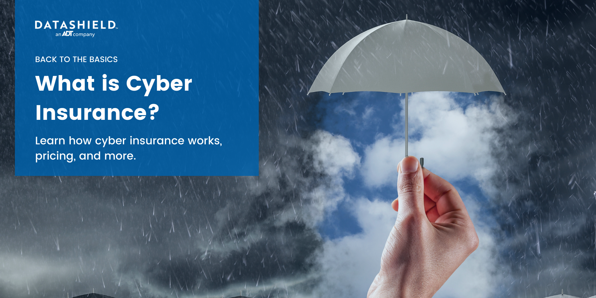 cyber insurance liability coverage
