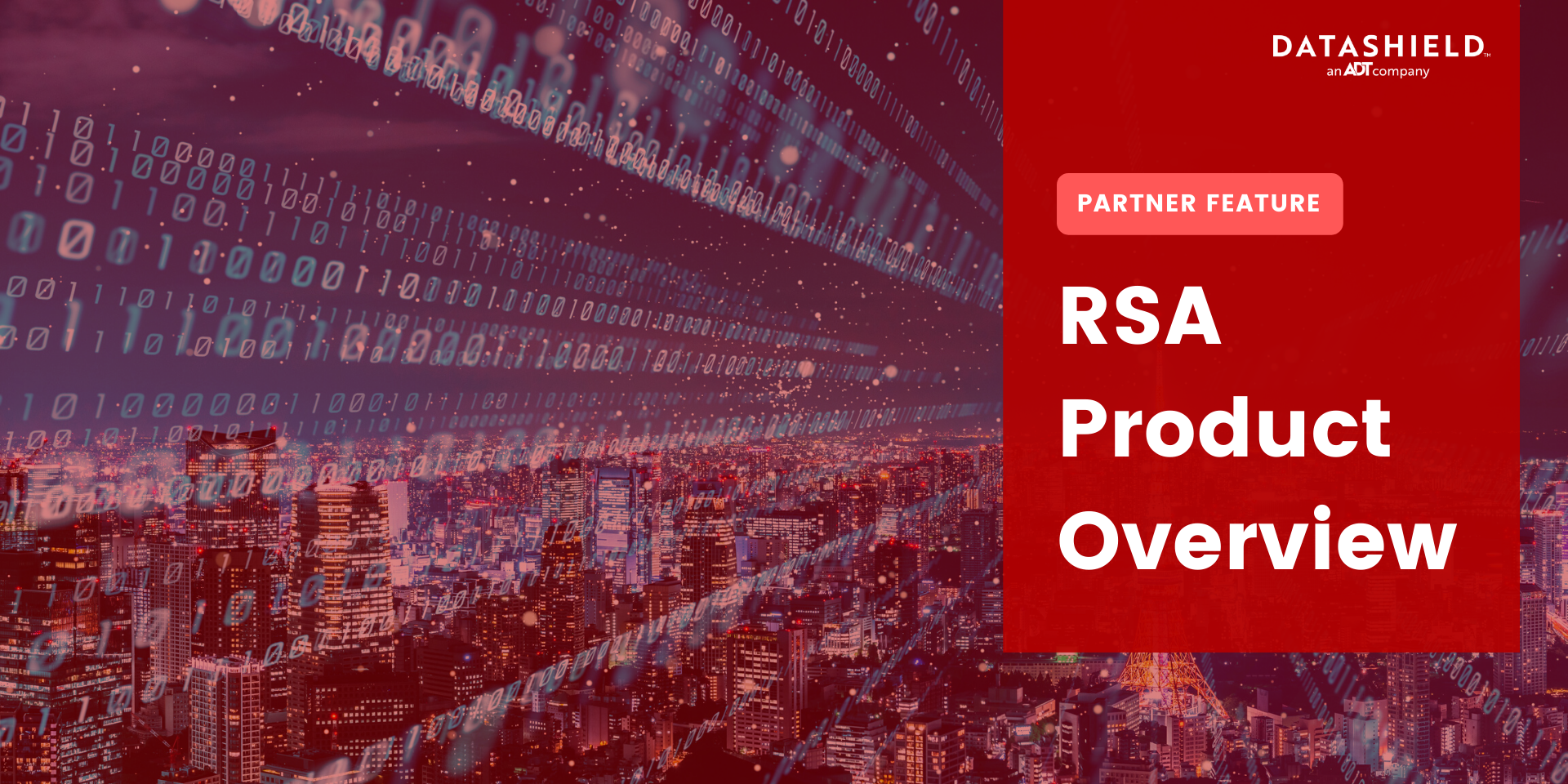 rsa overview